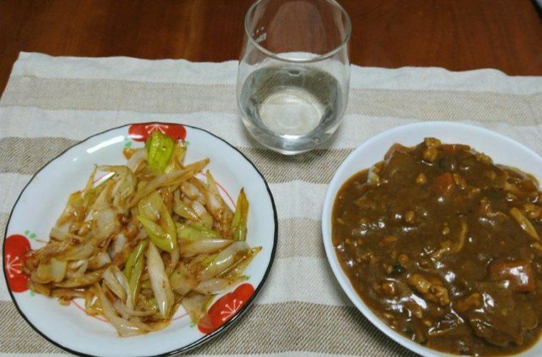 カレーとネギの二味炒め鴨風味