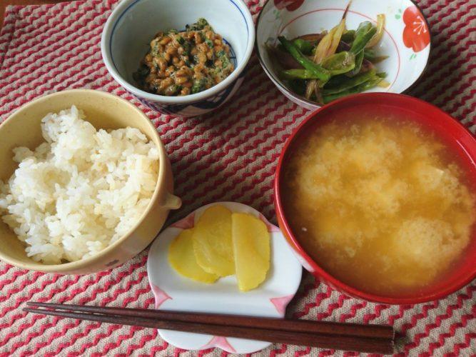 獅子唐とミョウガのきんぴら風と、海苔シソ納豆の朝ご飯